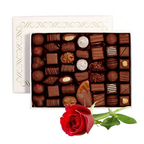 Amazing Gift Pack of Chocolates with Single Red Rose