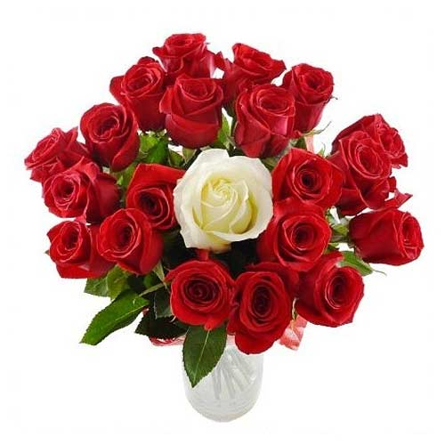 Blushing Floral Devotion White N Red Rose Bunch