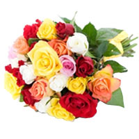 Sophisticated Bouquet of 24 Various Color Roses