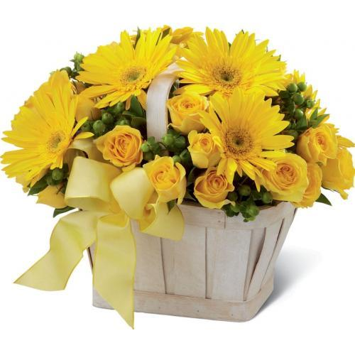 Charming Yellow Flower Collection
