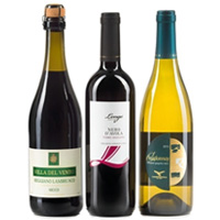 Saturated Gift Pack of Three Wine Bottles