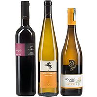 Rich Selection of Trio Wine Set