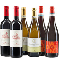 Light Quality Offer of Wines