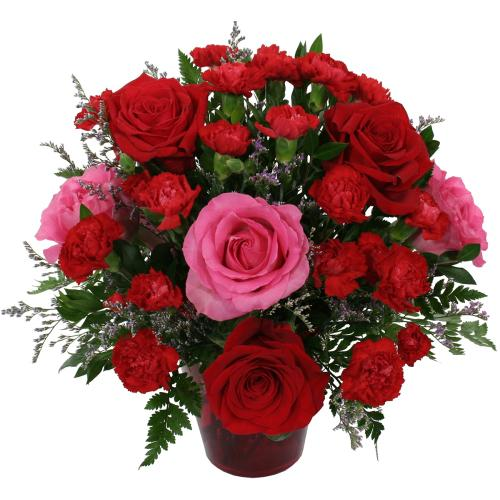 Beautiful Red And Pink Roses