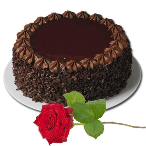 Delightful Red Roses With Lucious Chocolate Cake