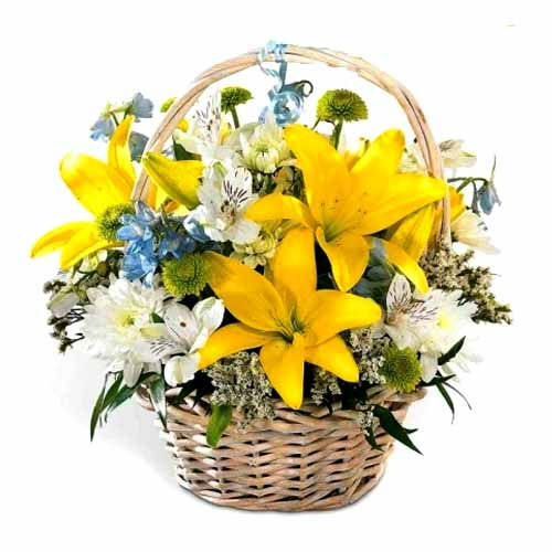 Lovely Blooming Combination of Yellow, Blue N White Flowers