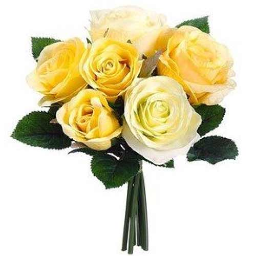 Cheerful Summer Delight 6 Yellow Roses Bunch