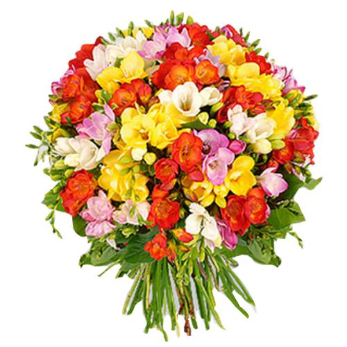 Enchanted Big Garden Freesias Flowers Arrangement