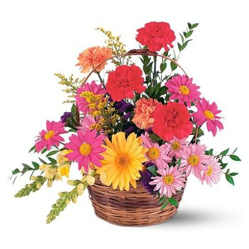 Eye-Catching Gift Basket of Mixed Shades of Flowers with Special Biscuits Pack