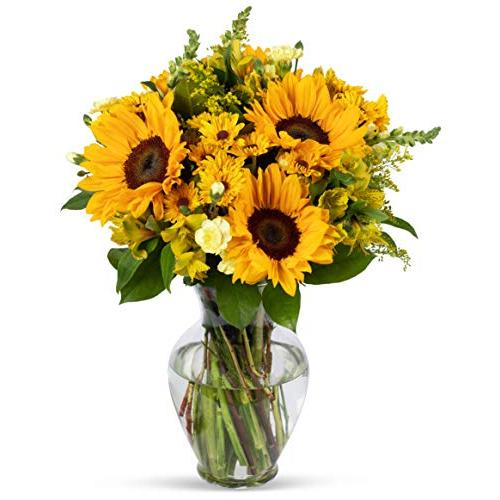 Regal Bouquet of Sunflowers with Decorative Green Fillers