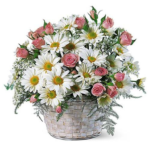 Stylish Big Wicker Basket of Pink Roses and White Daisies