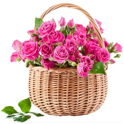 Sweet Gift Basket Full of Pink or Fuchsia Roses
