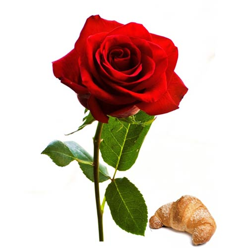 Extraordinary Combo Gift of Croissant with Red Rose