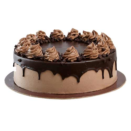Delectable Grand Party Cake in Chocolate Flavor